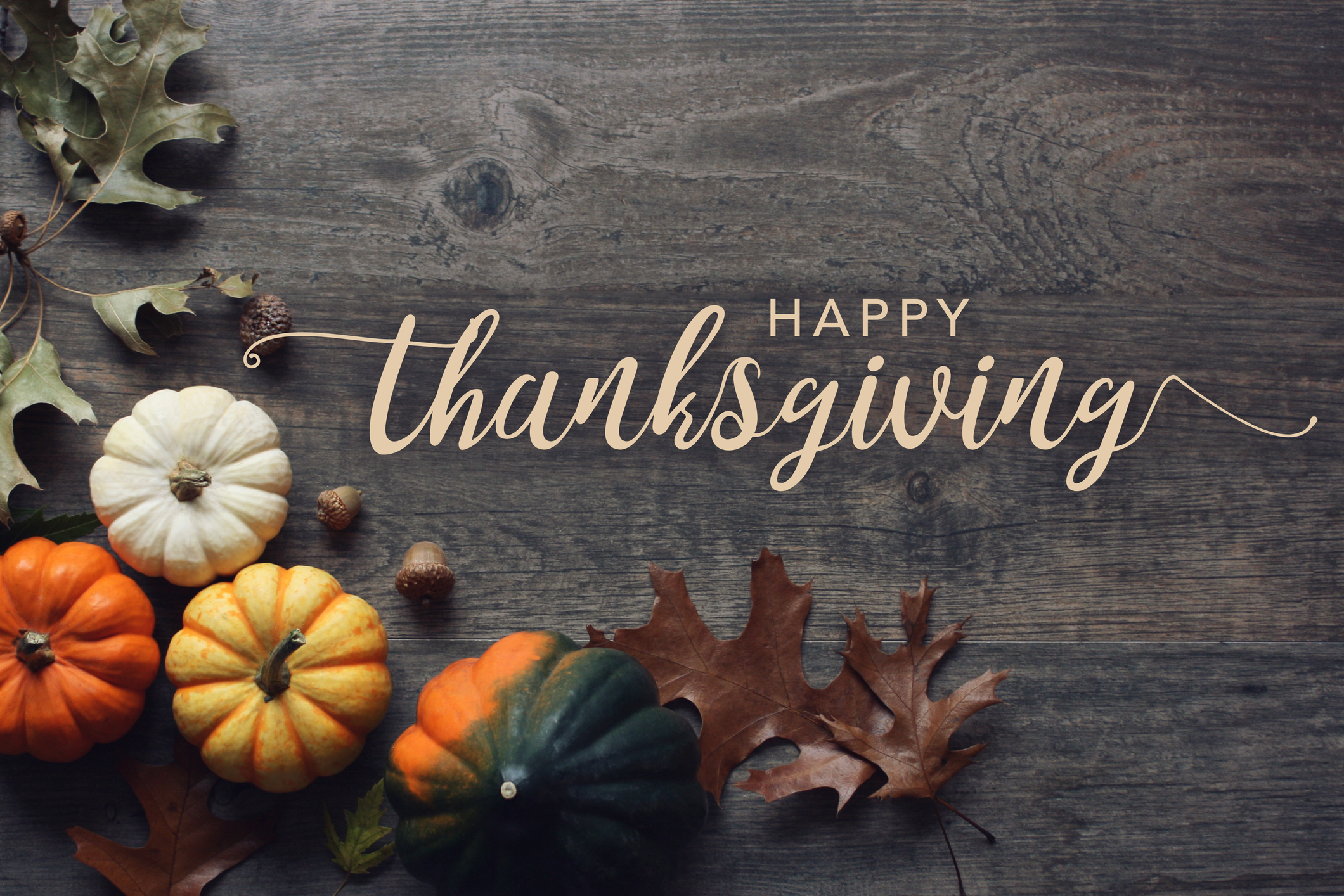 Happy Thanksgiving greeting script with colorful pumpkins, squash and leaves over dark wooden background